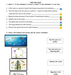 Science Quiz online worksheet [ 1413 x 1000 Pixel ]