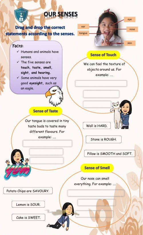 small resolution of Five Senses online pdf activity for Grade 3