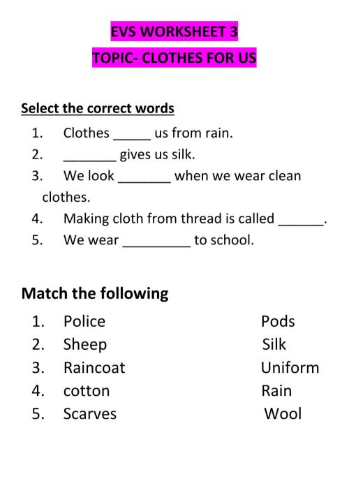 small resolution of Clothes online exercise for 2