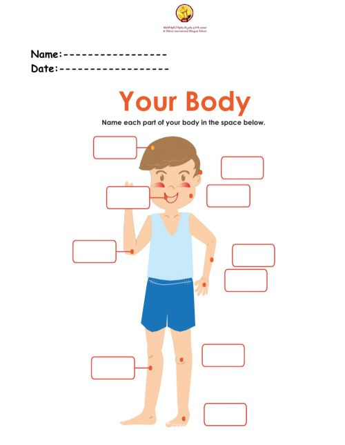 small resolution of Human Body worksheet for Grade 2