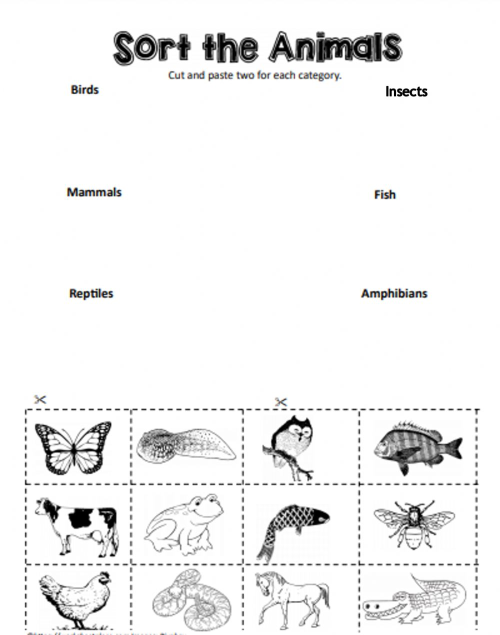 hight resolution of Types of Animals worksheet