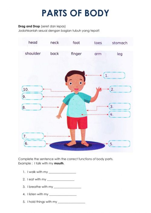 small resolution of Parts of Body interactive worksheet for Grade 5
