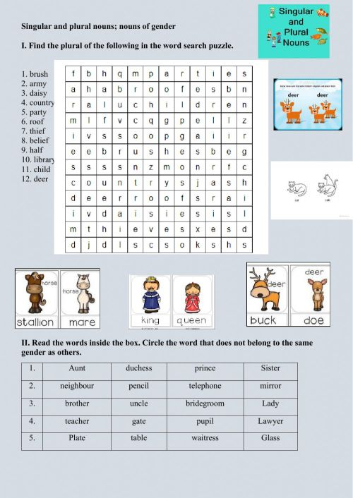 small resolution of Nouns of Gender and Singular Plural Nouns worksheet
