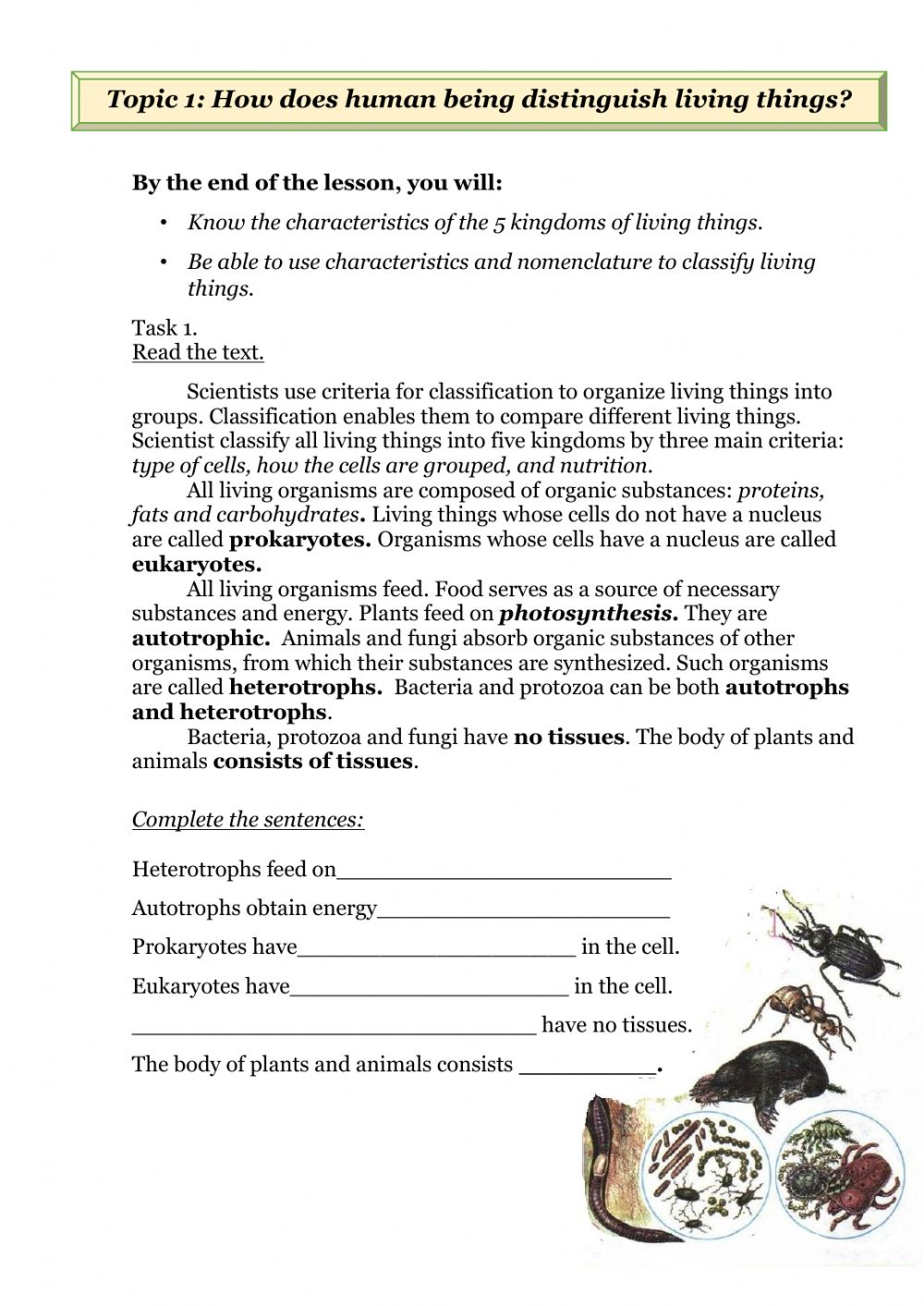 hight resolution of Living things classification worksheet