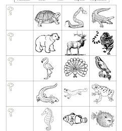 Animal Classification online exercise [ 1291 x 1000 Pixel ]