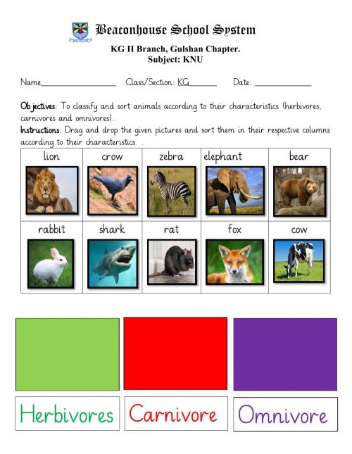 small resolution of Animal classification online exercise for Kindergarten