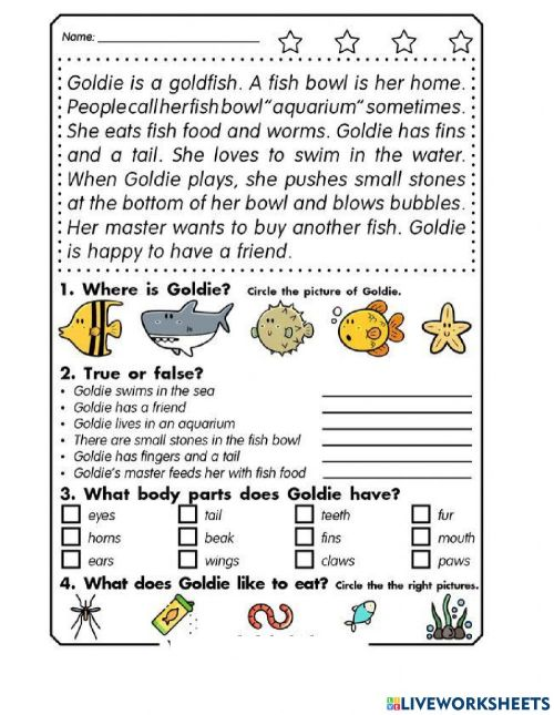 small resolution of English Test 3rd Grade Reading worksheet