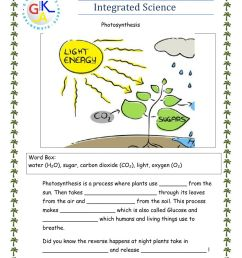 Photosynthesis interactive exercise for Grade 1 [ 1291 x 1000 Pixel ]