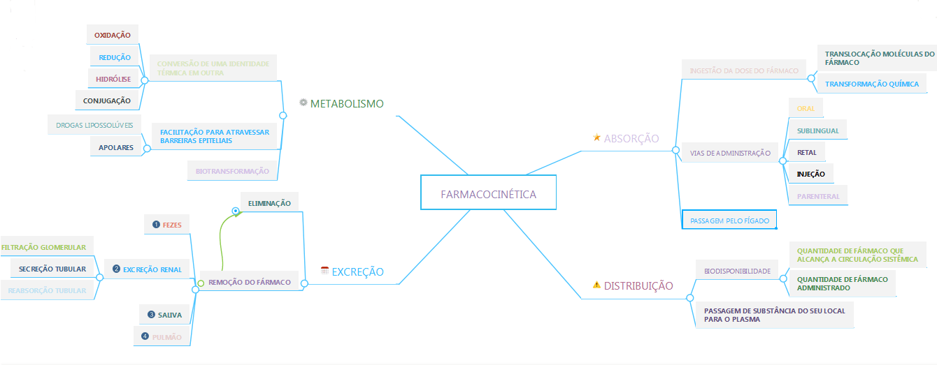MAPA MENTAL FARMACOCINTICA SARAH  Farmacologia
