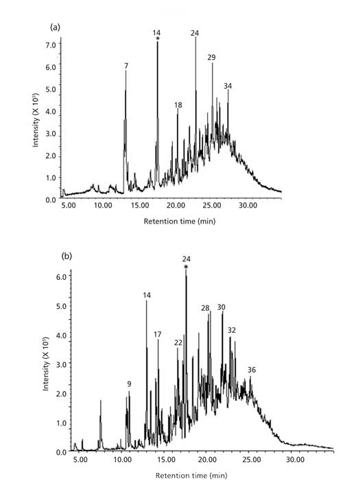 Gas Chromatography–Mass Spectrometry Characterization of