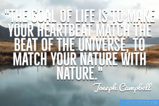 Match your nature with Nature quote