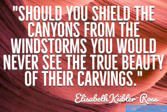 Shield the canyons quote