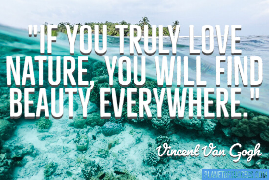Find beauty everywhere quote