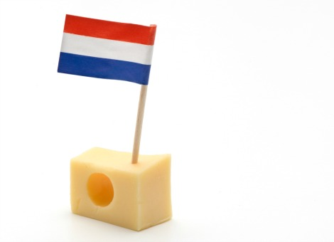 8 zuivel kaas nederland
