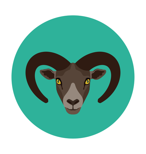 10 Personality Traits of The Capricorn Man Revealed! | Guy