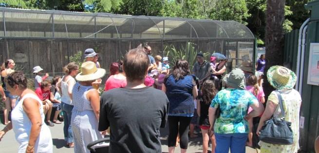 Zoos 50th Celebrations Jan 24th 2015 crop
