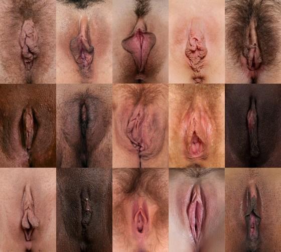 Quiz - Quanto bene conosci la tua vagina e altri bit e-9120