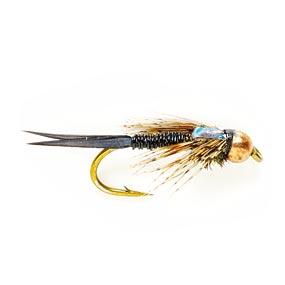 flyquestionII