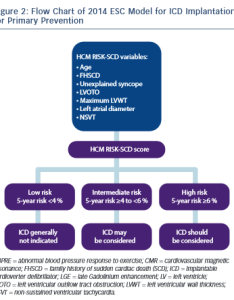 Figure flow chart of esc model for icd implantation primary prevention also rh radcliffecardiology