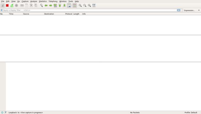 Page de capture de Wireshark sans rien capturé