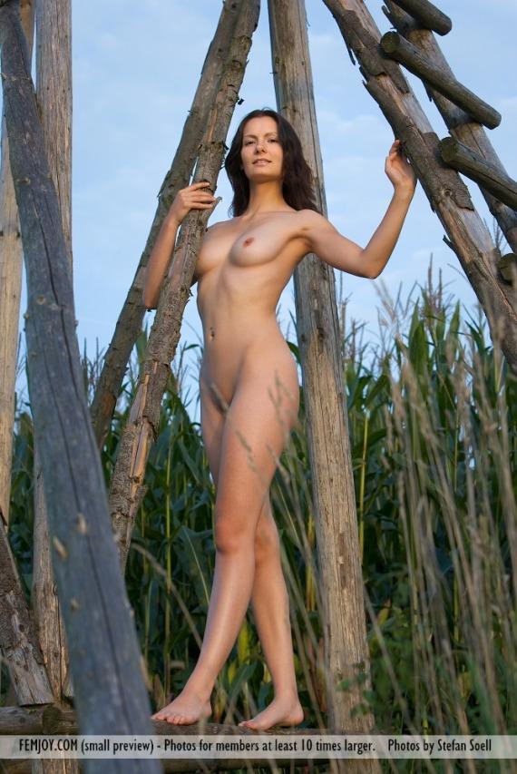 Nicolette, brunette, nude, ass, ladder, outdoors, pose