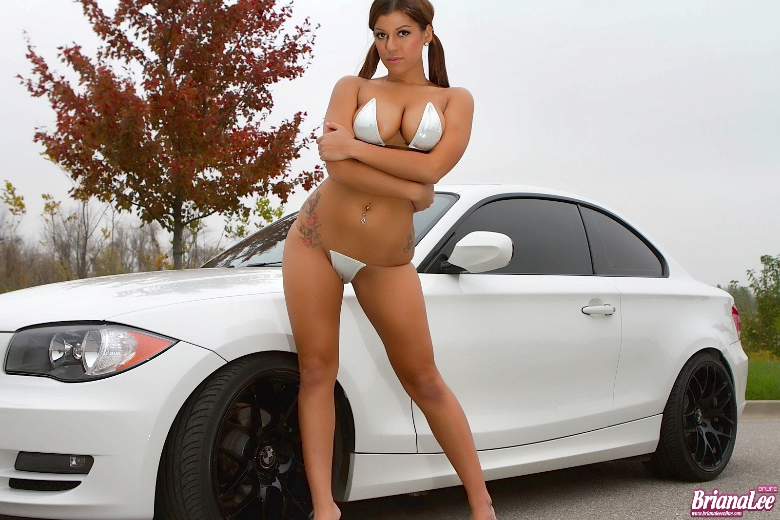 Briana Lee, brunette, strip, nude, bikini, busty, ass
