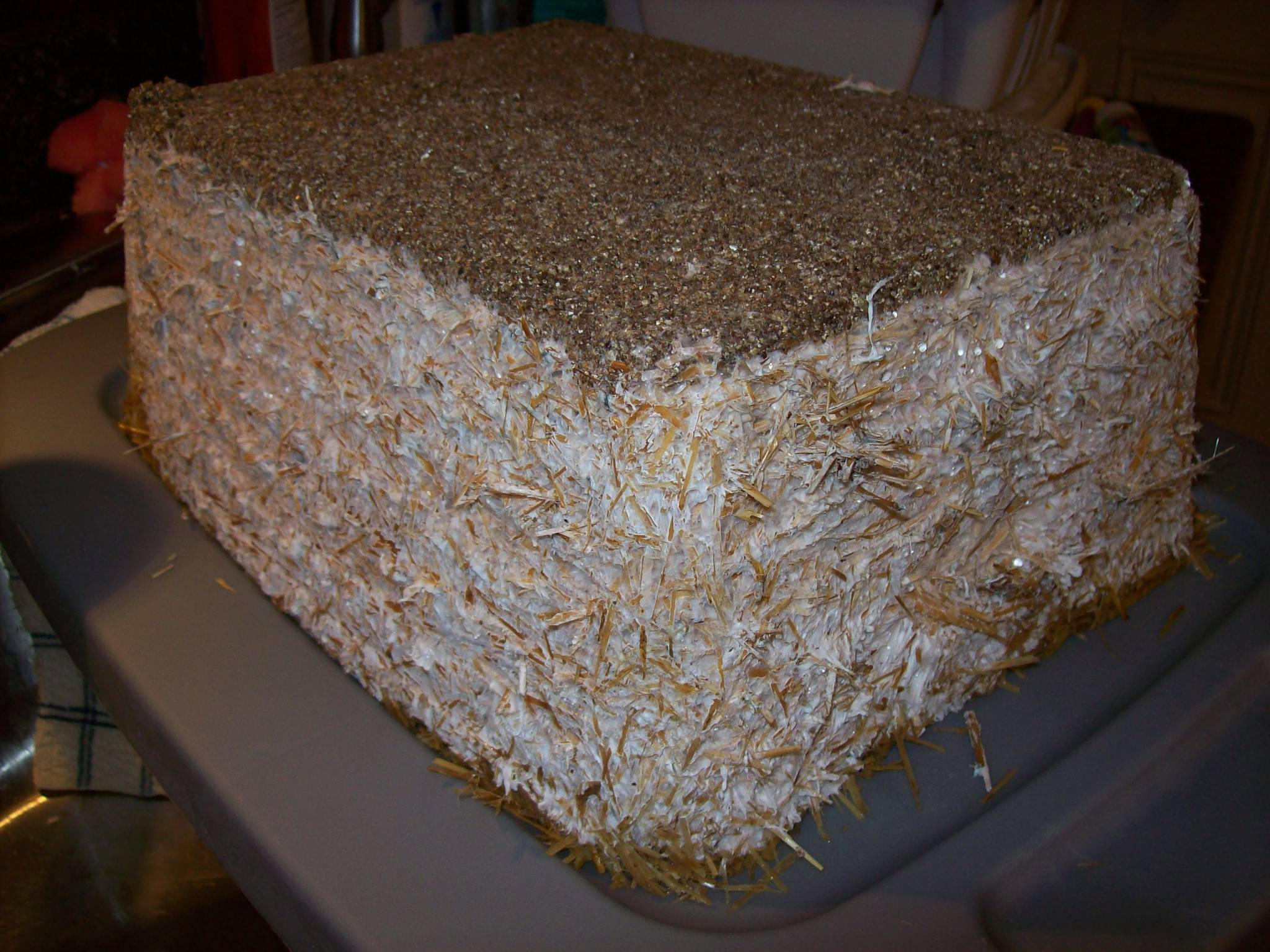 Case this log  Mushroom Cultivation  Shroomery Message