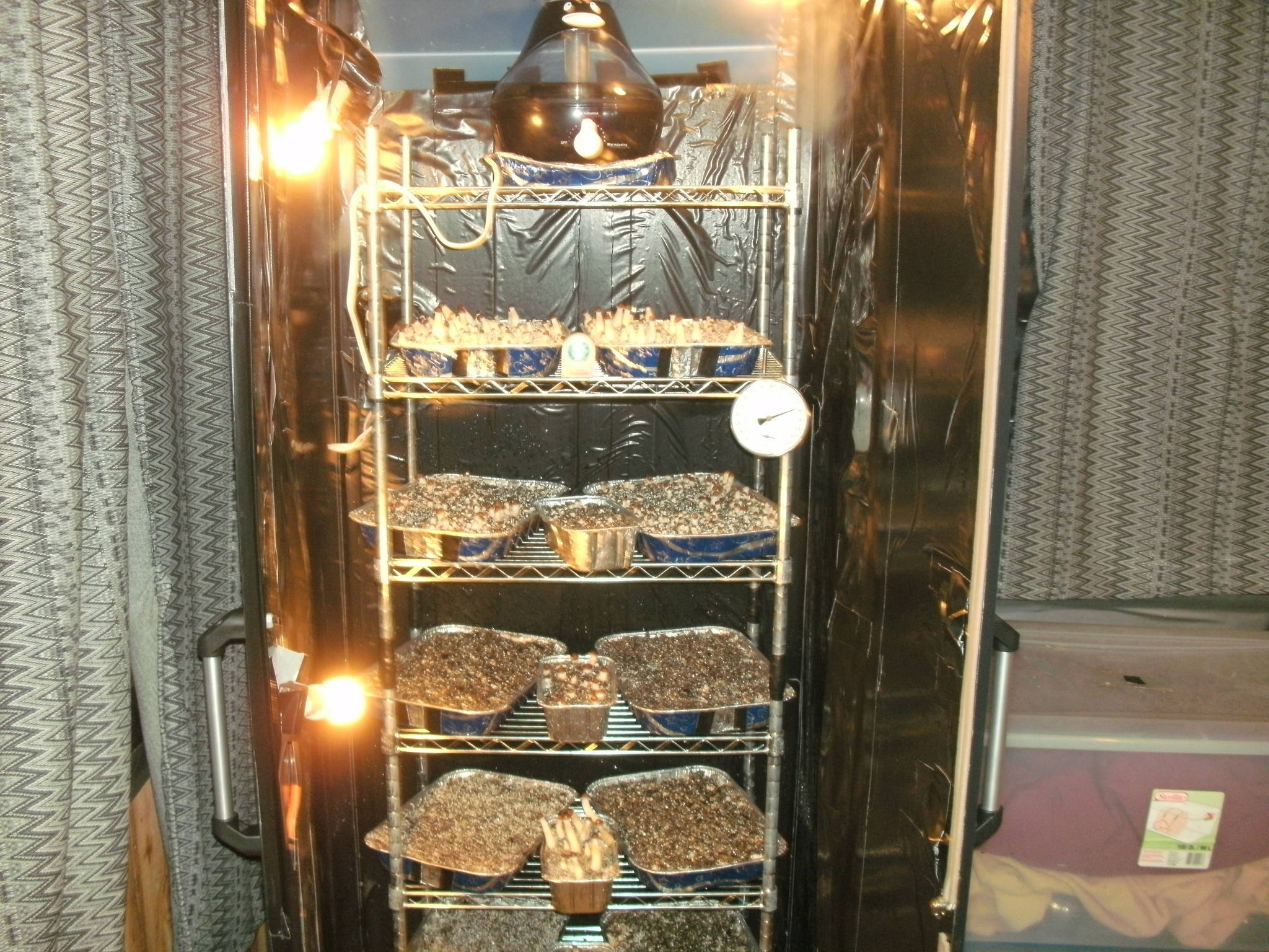 Sterilite Plastic Cabinet Grow  Mushroom Cultivation
