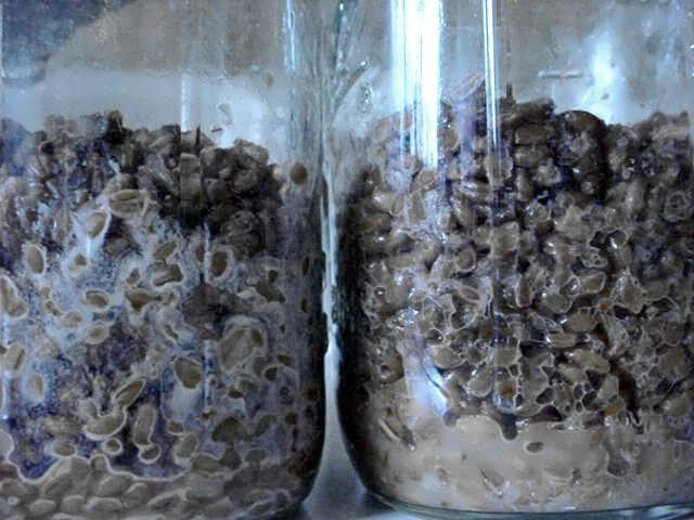 Questionable Brf Jar Quot Wet Spot Quot Deleted Contamination