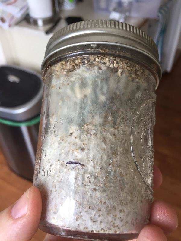 Pf Tek Contamination - Year of Clean Water