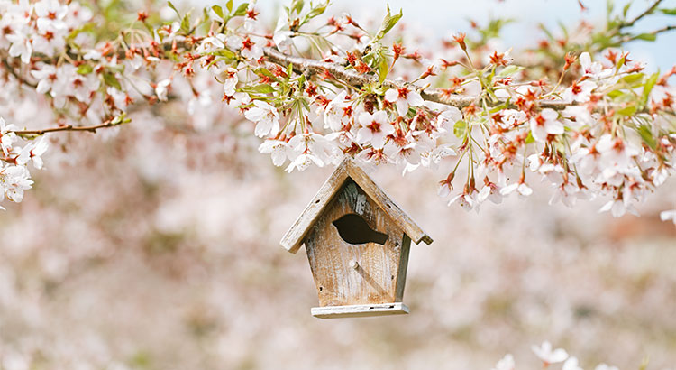 Data Says April is the Best Month to List Your Home for Sale | Simplifying The Market