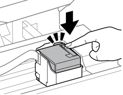 Removing and Installing the Ink Cartridge