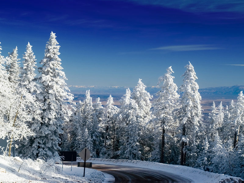 Best Winter Destinations for Snowshoeing  TripsToDiscover