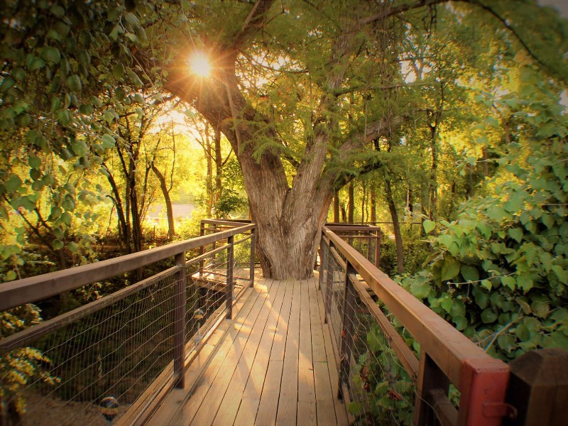 Stay In A Luxury Tree House By The Guadalupe River In