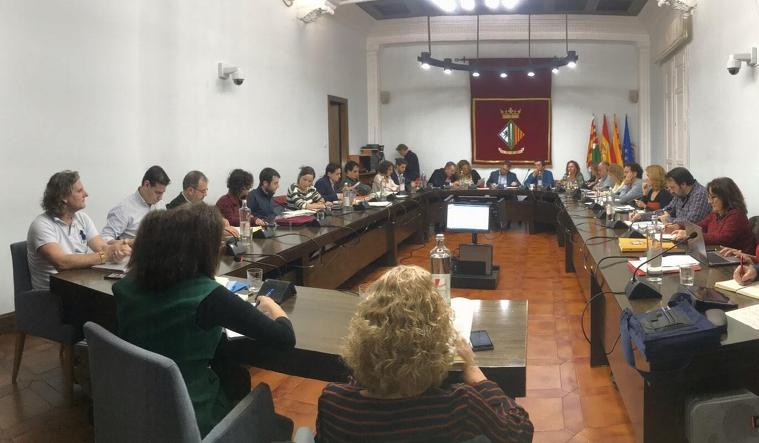 Ramon Andreu va assistir al Ple de Pressupostos pel 2020