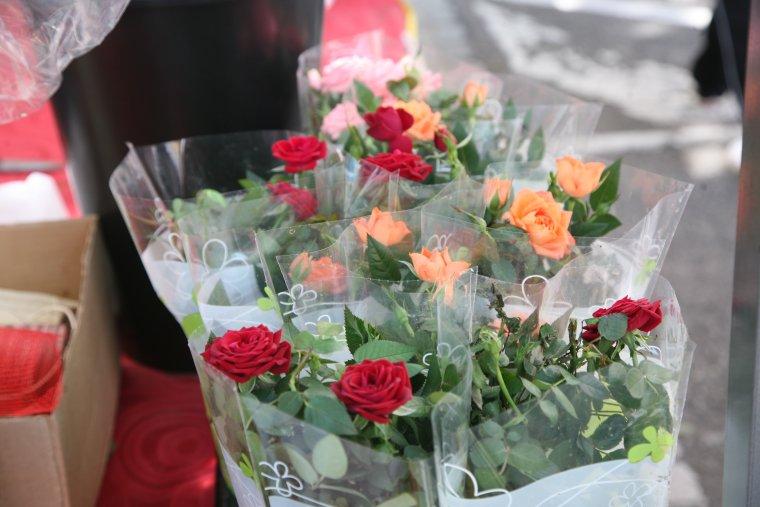 Imatge recurs de roses de Sant Jordi