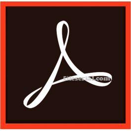 Adobe Acrobat Pro DC 2020.013.20074 Multilingual + Crack [Latest]