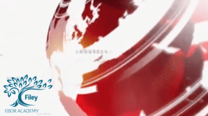 BBC News Report_static screenshot