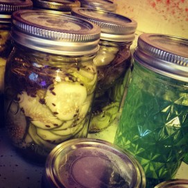 Some finalized basil jelly and dill pickles