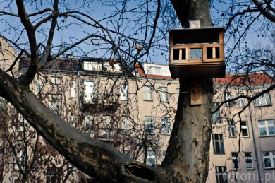 frozen-street-photos-czyli-zamrozony-wroclaw-12