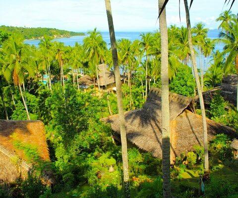 Hilltop Room Resort M01 - Puerto Galera, Mindoro, Luzon, Filipijnen