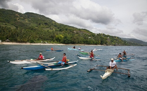 Oslob Walvishaaien - Cebu, Filipijnen