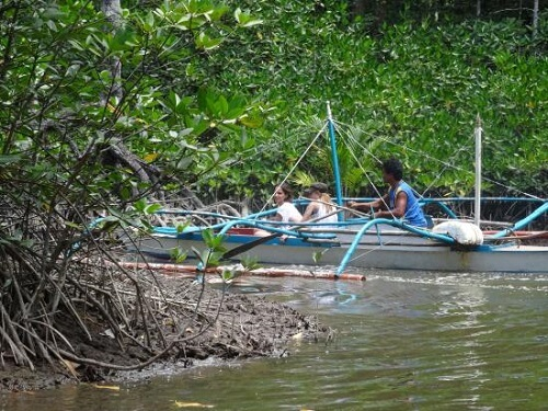 Mangrove River tour - Port Barton, Palawan, Filipijnen