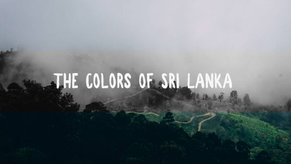 sri lanka travel videography