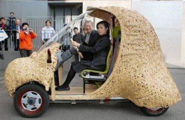 bamboo-car_40012