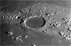 Cratere-Plato