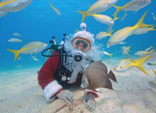 This picture provided by the Florida Keys News Bureau shows Spencer Slate, garbed as Santa Claus, diving with yellowtail snapper and an angelfish on December 24, 2013, in the Florida Keys National Marine Sanctuary off Key Largo, Florida. Slate, a Key Largo dive charter operator, has been donning the jolly man's outfit for years to take the plunge, but there is a serious side to his shenanigans. His customers frequently have the opportunity to have their photo taken with Santa for an extra fee and the revenue funds a local children's charity. AFP PHOTO/Bob Care/Florida Keys News Bureau/HO ++RESTRICTED TO EDITORIAL USE - NOT FOR ADVERSTISING OR MARKETING CAMPAIGNS - MANDATORY CREDIT: AFP PHOTO/FLORIDA NEWS BUREAU/BOB CARE/HO - DISTRIBUTED AS A SERVICE TO CLIENTS++