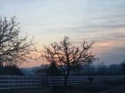 Sunrise 12-2-14
