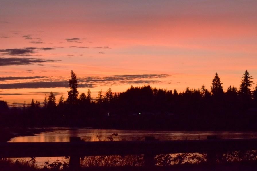 frozen pond at sunrise 1-2-15