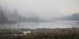 11-04-15 foggy pond at sunrise